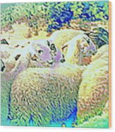 Counting The Sheep But Can't Sleep  Wood Print