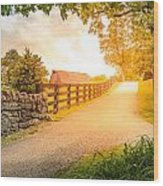 Country Alley Wood Print