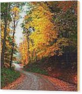 Country Autumn Gravel Road Wood Print by Julie Dant
