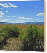 Country Boy  Wood Print by Tim Rice