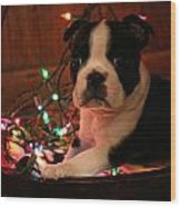 Country Christmas Puppy Wood Print