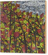 Country Colours Wood Print