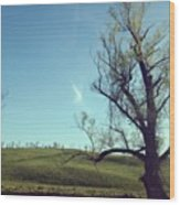 #country #countryside #tree #bluesky Wood Print