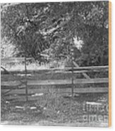 Country Fence Wood Print