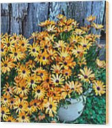 Country Floral Wood Print
