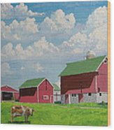 Country Home Wood Print