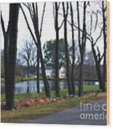 Country Home Through The Trees Wood Print