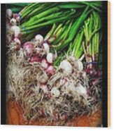 Country Kitchen - Onions Wood Print