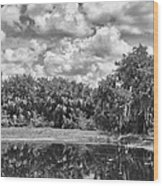 Country Lake 2 Wood Print