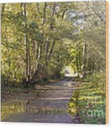 Country Lane In Autumn 3 Wood Print