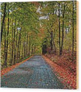 Country Lane In Autumn Wood Print