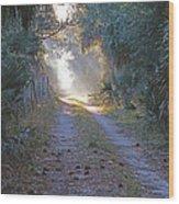 Country Lane Wood Print