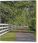 Country Lane Wood Print