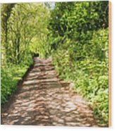 Country Lane Painting Wood Print