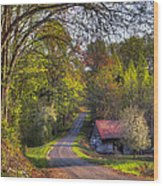 Country Lanes Wood Print