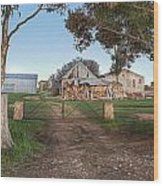 Country Life Wood Print by Shannon Rogers