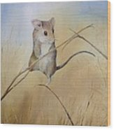 Country Mouse Wood Print