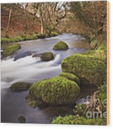 Country River Scene Wales Wood Print