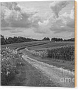 Country Road Wood Print by Chris Scroggins