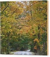 Country Road Fall Vermont Wood Print