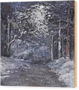 Country Road On A Wintery Night Wood Print