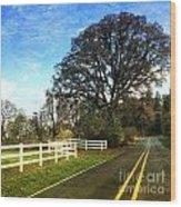 Country Road On Sauvie Island Wood Print