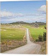 Country Road Otago New Zealand Wood Print