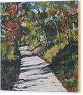 Country Road Two Wood Print