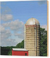 Country Silo Wood Print