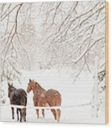 Country Snow Wood Print