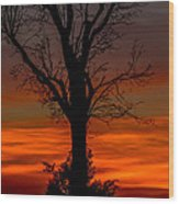 Country Sunsets Wood Print