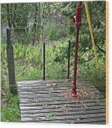 Country Water Pump Wood Print