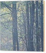 Country Woodlands Wood Print