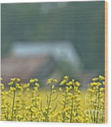 Country Yellow Wood Print