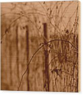 Countryside Fence Wood Print