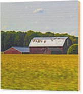 Countryside Landscape With Red Barns Wood Print