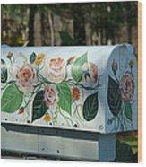 Countryside Mailbox #14 Wood Print