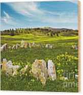 Countryside With Stones Wood Print
