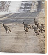 County Road Crew Wood Print by Thomas Young
