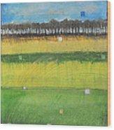 County S Wood Print