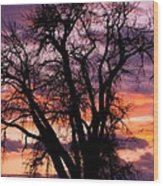 County Sunset Wood Print