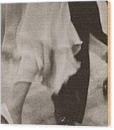 Couple Ballroom Dancing Legs Wood Print