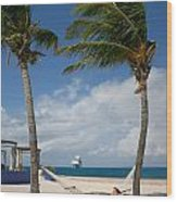 Couple In Hammock On Beach Wood Print by Amy Cicconi