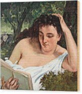 Courbet's A Young Woman Reading Wood Print