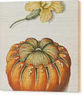 Courgette And A Pumpkin Wood Print