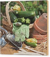 Courgette Basket With Garden Tools Wood Print