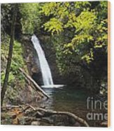 Courthouse Falls In North Carolina Wood Print
