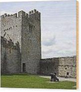 Courtyard Cahir Castle Wood Print