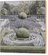 Courtyard Garden Wood Print