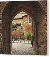 Courtyard Of Cathedral Of Ste-cecile In Albi France Wood Print